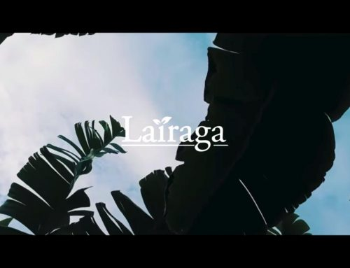 Huerta Lairaga, Proveedor oficial de plátanos