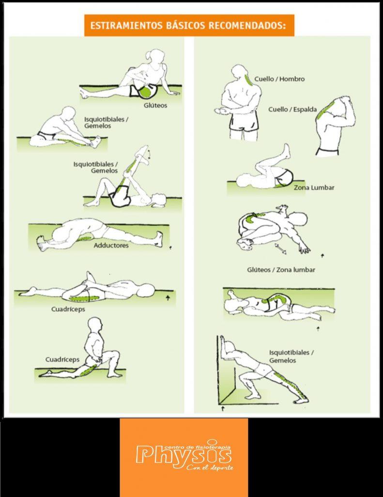 Estira los grupos musculares